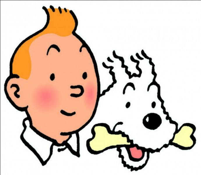 Quelle est la différence entre Tintin et Milou ?