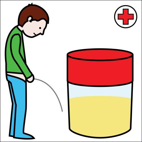 Pourquoi l'urine est-elle chaude ?