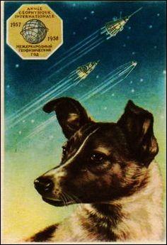 """L - Le premier être vivant à aller dans l'Espace est la chienne """"Laïka"""", envoyée par les Américains."""