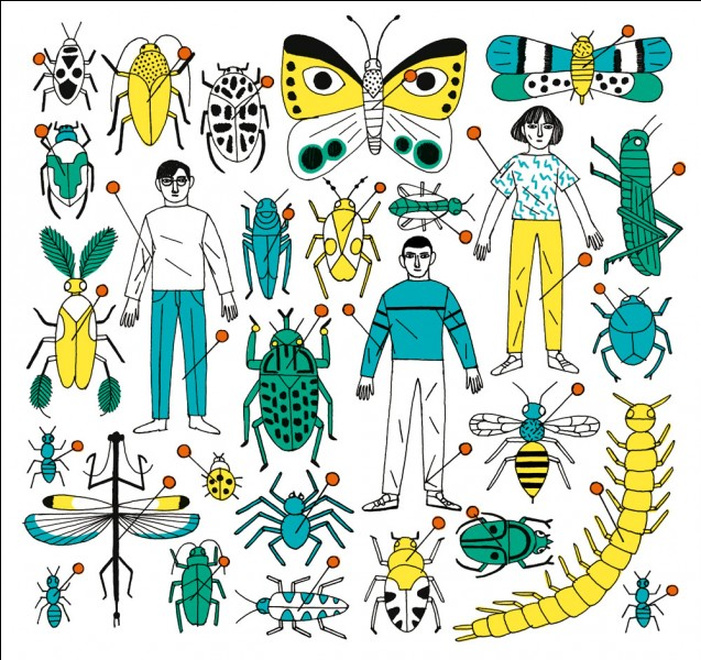 """D - La """"dengue"""" est une maladie transmise par la piqûre d'une tique."""