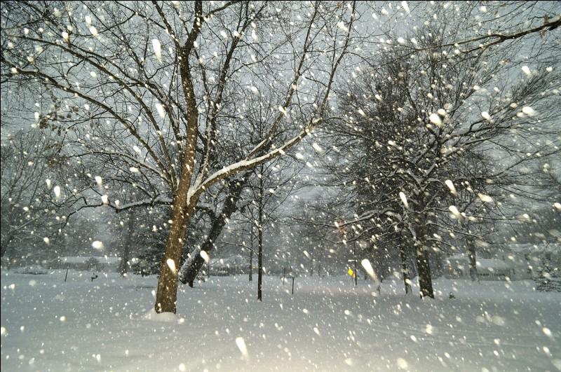 """F - Tous les """"flocons"""" de neige ont la même forme et la même taille."""