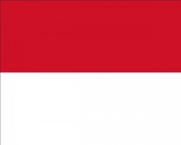 À quel pays correspond le drapeau ci-dessus ?
