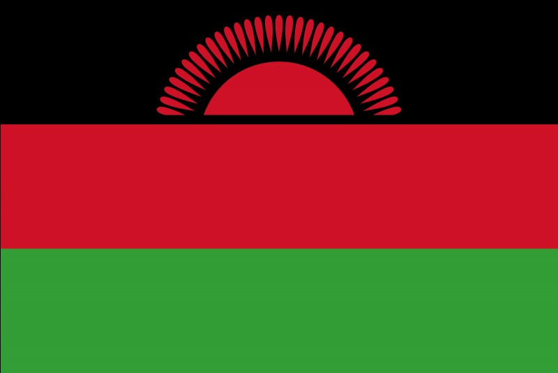 Ce drapeau est celui du :