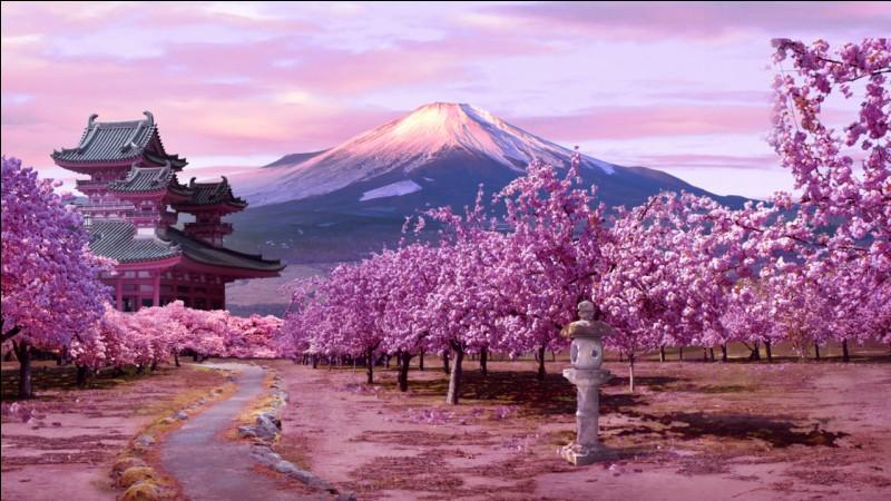 Sur quel continent se situe le Japon ?