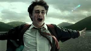 Quel personnage masculin d'Harry Potter es-tu ?
