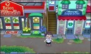 Combien y a-t-il de bâtiments dans la rue commerçante ?