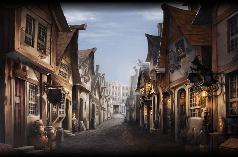 Comment s'appelle la rue commerçante des sorciers ?