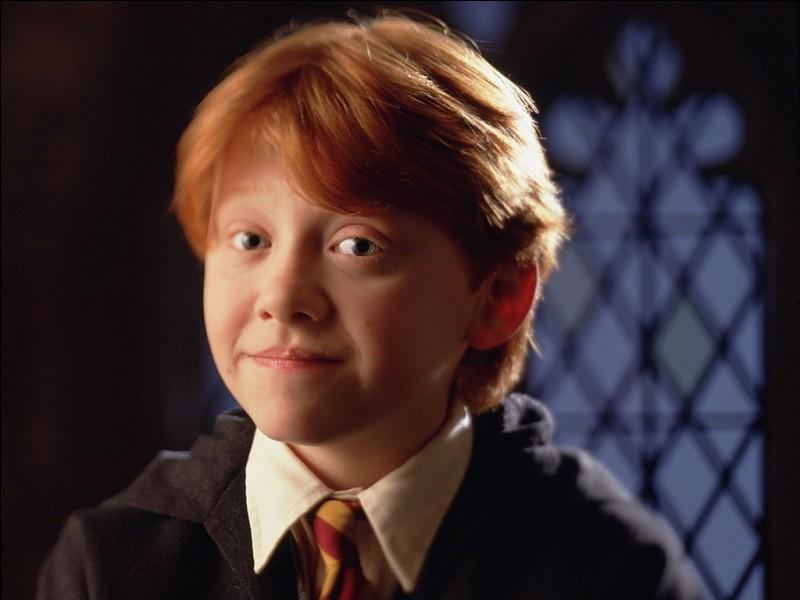 Combien de frères et sœurs a Ron, le meilleur ami de Harry Potter ?