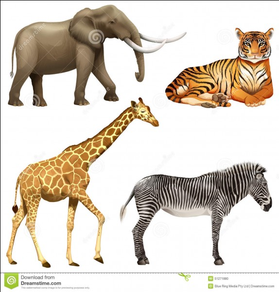 Quel est l'animal que tu préfères parmi ces quatre animaux ?