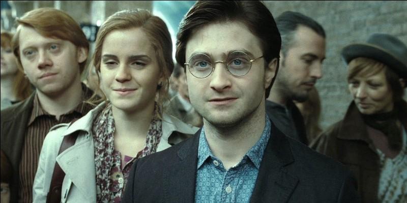 """Quelle famille préfères-tu dans """"Harry Potter"""" ?"""