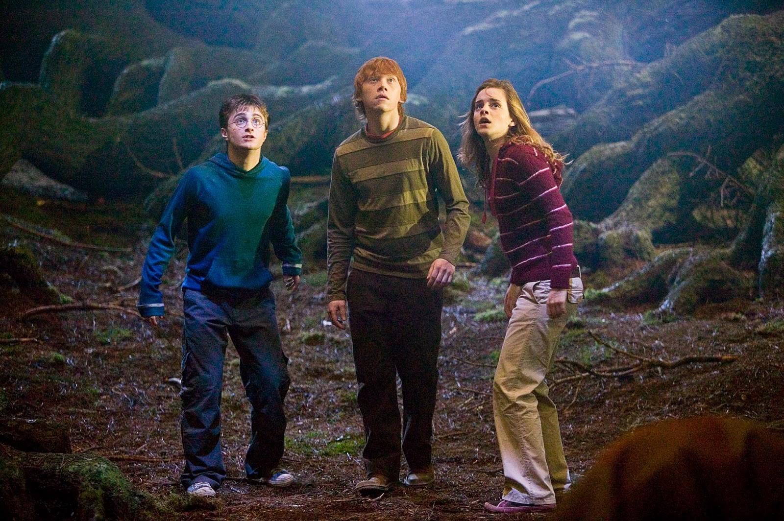'Harry Potter' : familles