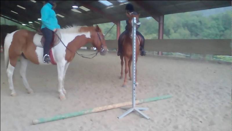 Que préfères-tu faire à cheval ?