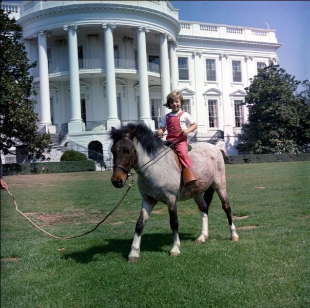 Aux États-Unis, dans quelle ville se trouve la Maison-Blanche ?