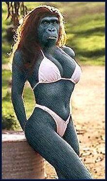 Elle est dans hindouisme la mère du dieu singe Hanumân. Qui est elle ?