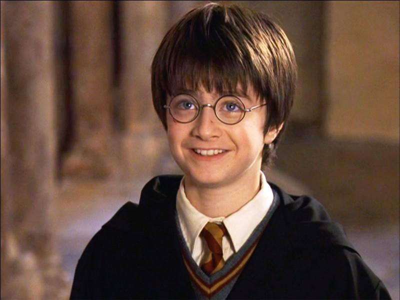 Quel est le premier sorcier que rencontre Harry à ses 11 ans ?