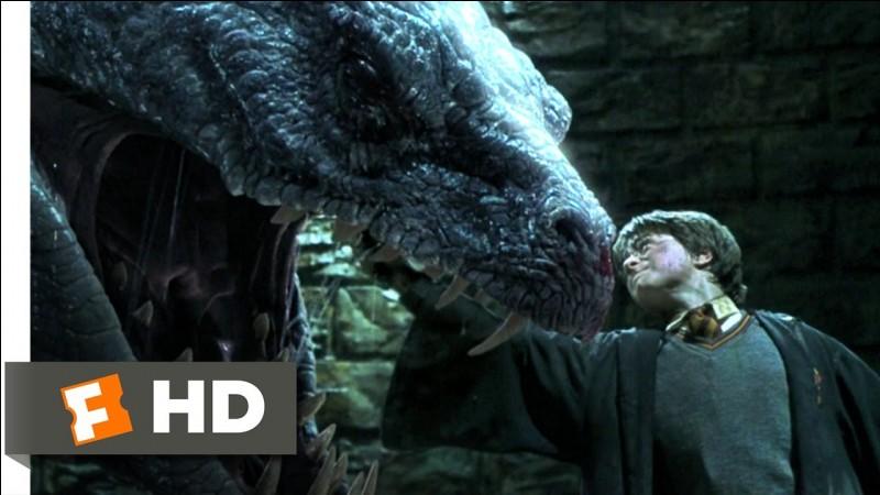 """Dans """"Harry Potter 2"""", quel personnage a été pétrifié par le Basilic en premier ?"""