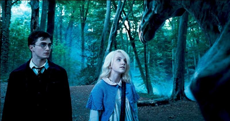 A partir du 5e film, pourquoi Luna Lovegood et Harry Potter sont-ils les seuls à voir les Sombrals ?