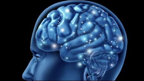Vrai ou faux ?Ce n'est pas dans le cerveau que l'on retrouvera des traces d'un AVC.