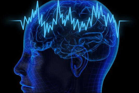 Vrai ou faux ?Le cervelet est dans le cortex cérébral.