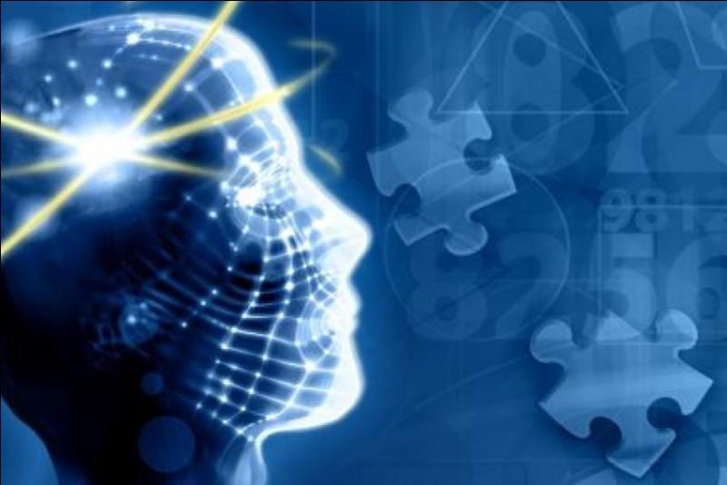 Vrai ou faux ?L'hypothalamus gère la sensation de faim, de soif et de sommeil, entre autres.