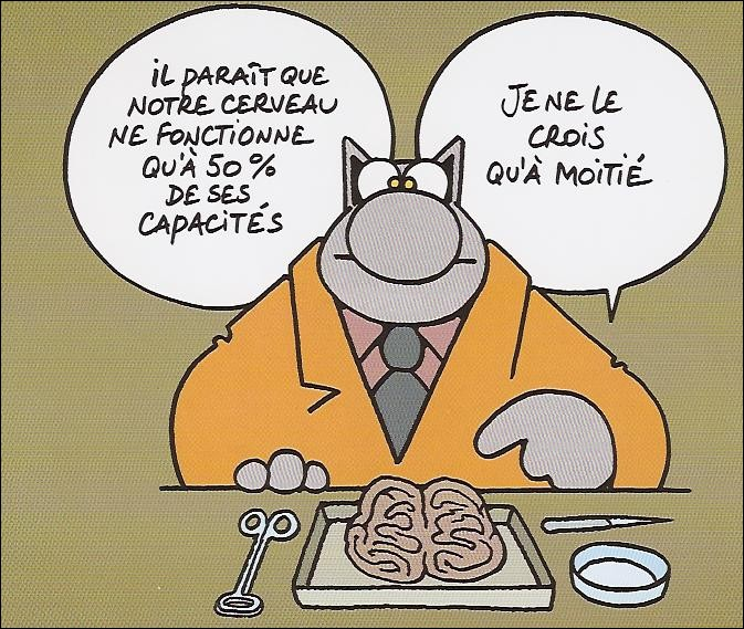 Qui est l'auteur de ce 'Chat' toujours plein d'humour, (lequel contrairement au dessin a un cerveau et sait très bien s'en servir) ?