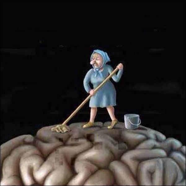 Quelle organisation terroriste, militaire et politique, pratique le 'lavage de cerveau' ?
