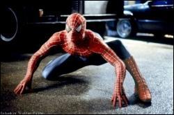 Quel est le point commun entre Batman et Spiderman ?