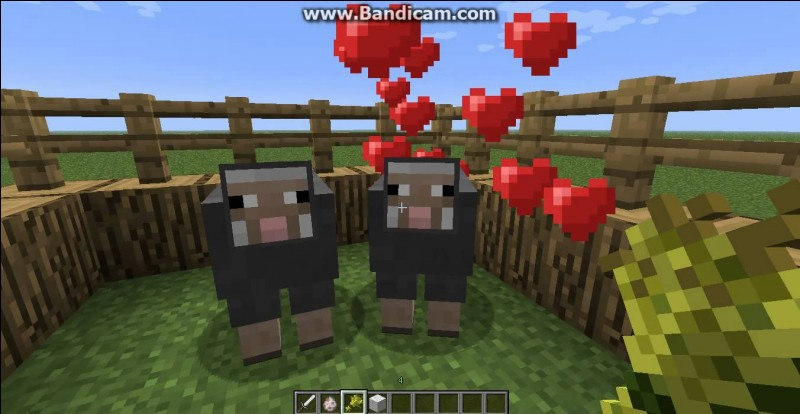 """Le Berger. Combien y a-t-il de couleurs de laine dans """"Minecraft"""" ?"""