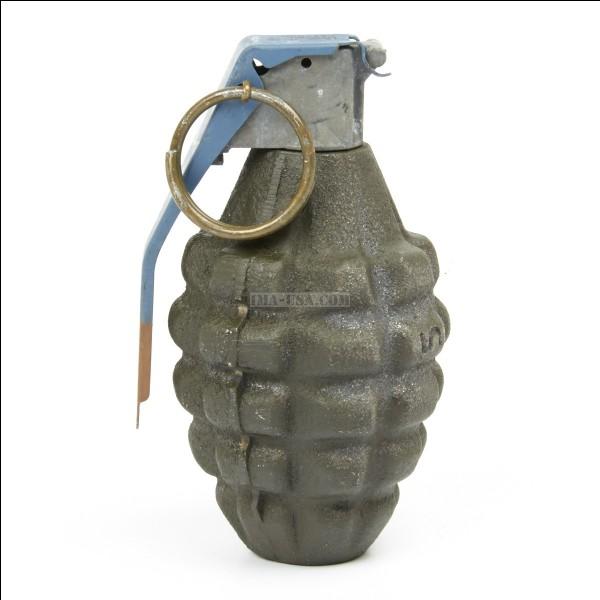 Quelle est cette grenade à main standard des forces armées des États-Unis ?