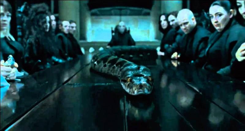 Pourquoi ce n'est pas Harry Potter qui à tué Nagini ?