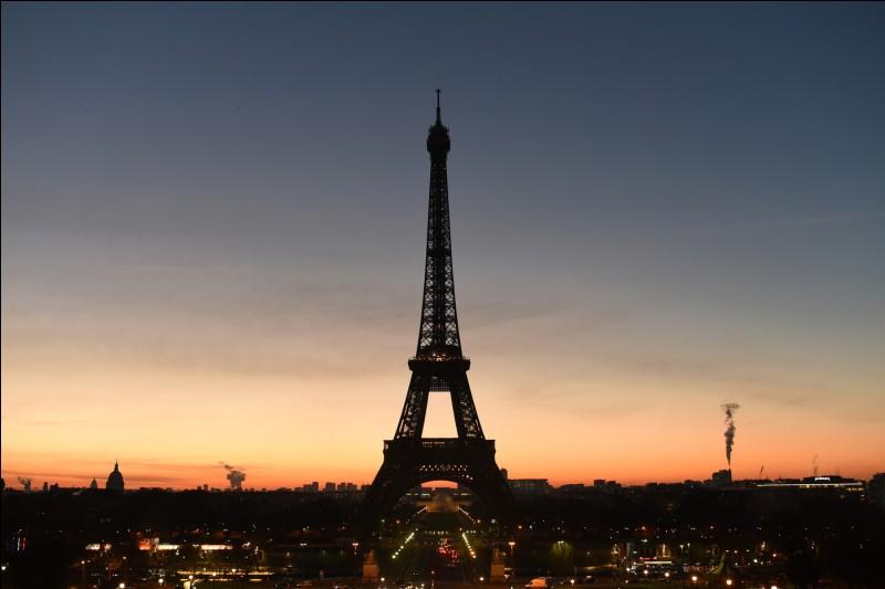Demain nous irons voir la tour Eiffel.