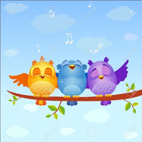 Les oiseaux chante car ils sont empli de bonheur.