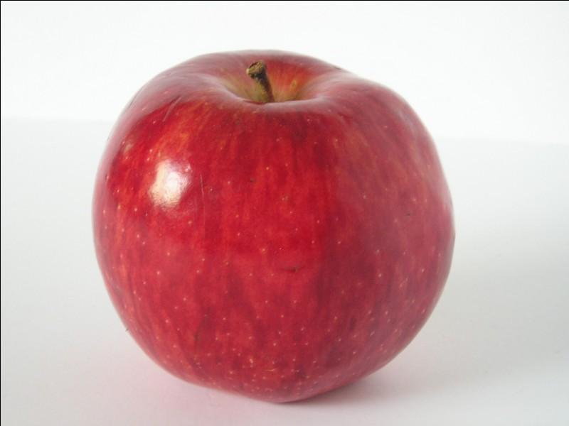 Pour finir : Ces pommes, je les ai mangé !