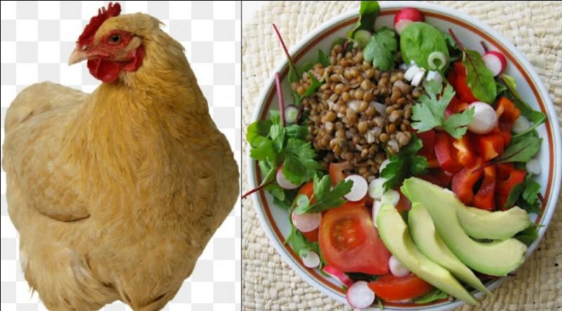 Es-tu du genre végétarien ou carnivore ?
