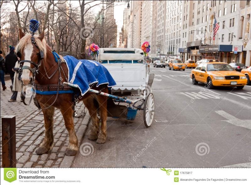 Quelle onomatopée les charretiers se servent-ils pour faire aller le cheval à droite ?