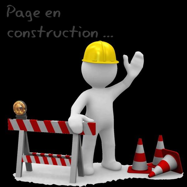 Que construis-tu en premier ?