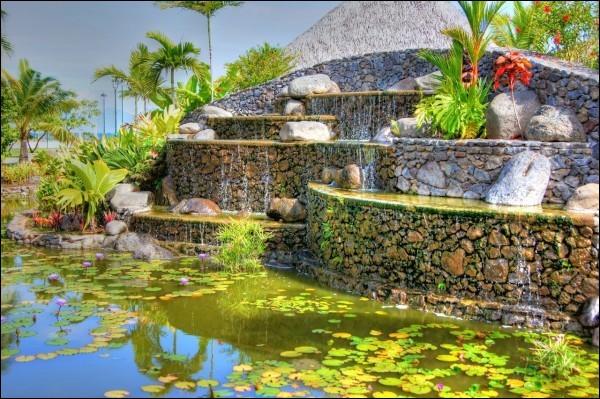 Capitale administrative de la Polynésie française, située sur l'île de Tahiti, je compte environ 25 000 habitants. Venez vous détendre dans mon parc paysager à dominance végétale, les Jardins de Paofai, à...