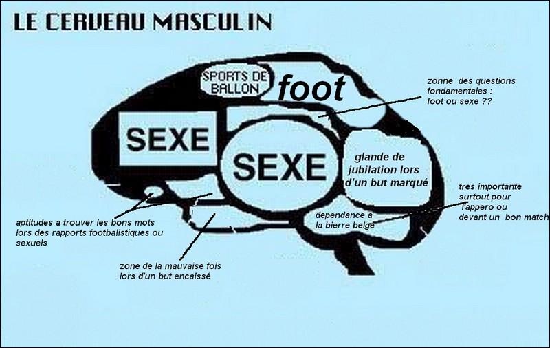 Accessoire servant à indiquer la direction du cerveau de l'homme !