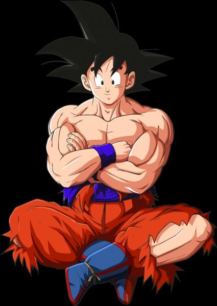 Dans quel manga Son Goku est-il présent ?