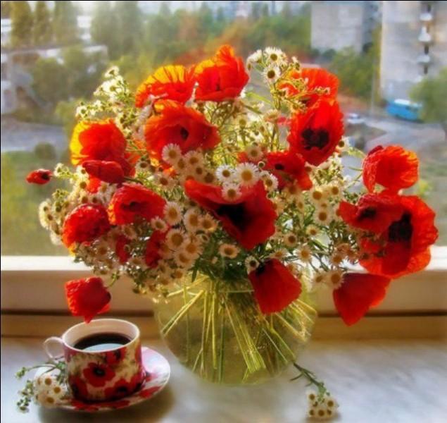 Outre pour désigner des fleurs, si, dans une expression connue, je prononce le mot bouquet, que peut-il signifier ?