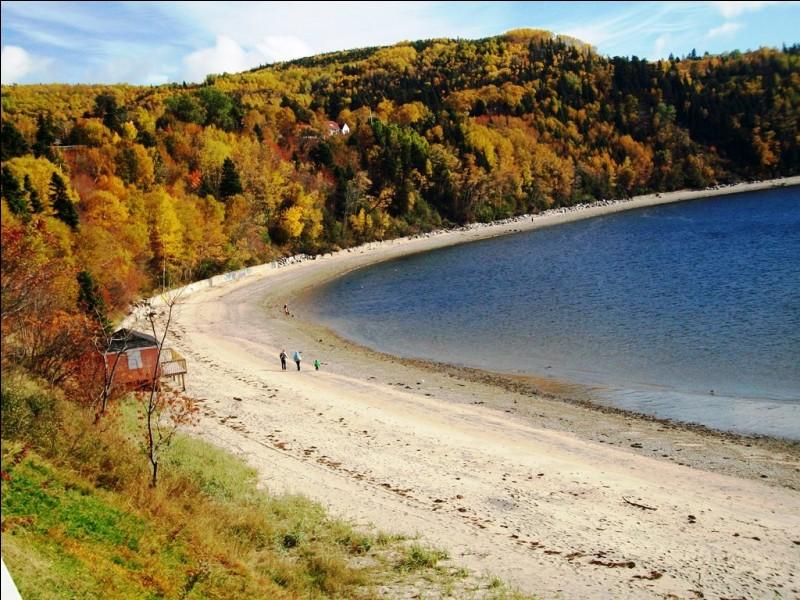Terminons avec la plage de Tadoussac, au Québec. Elle se situe à l'embouchure de la rivière Saguenay. Où celle-ci vient-elle se jeter ?
