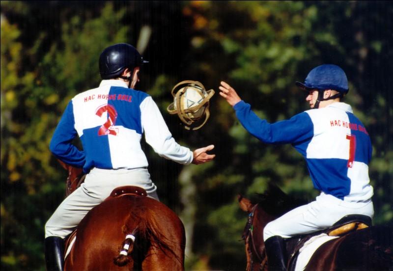 Quel jeu se joue à cheval avec un ballon ?