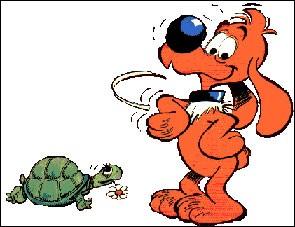 Ma meilleure amie est une tortue prénommée Caroline :