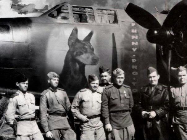 En 1935, je deviens le chien officiel de combat du corps des marines américains :