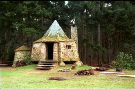 A quel enterrement Harry assiste t'il près de la cabane de Hagrid ?