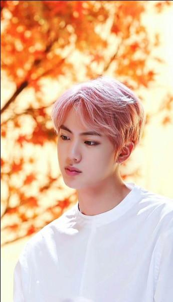 Quelle est la couleur favorite de Jin ?