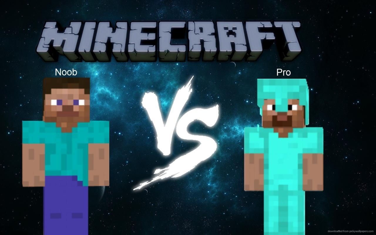 Minecraft : noob/pro