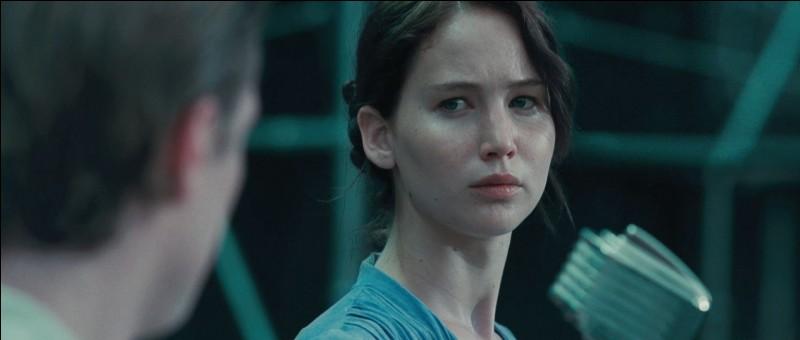 Katniss s'est portée volontaire pour participer aux 74e Hunger Games. Qui aurait dû y participer ?