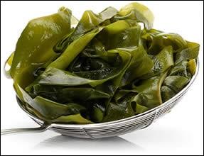 """W - Le """"wakamé"""" est une algue non comestible."""