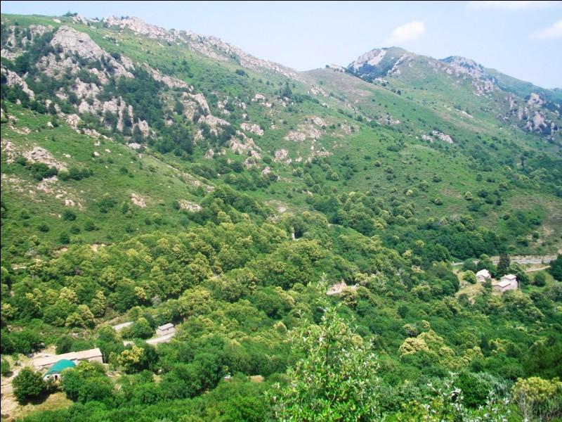 Parmi ces départements, lequel n'est pas frontalier de l'Ardèche ?